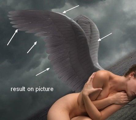 angel24e