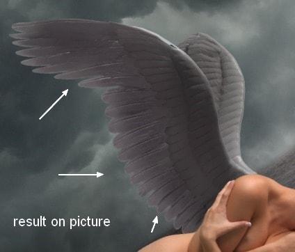 angel25c
