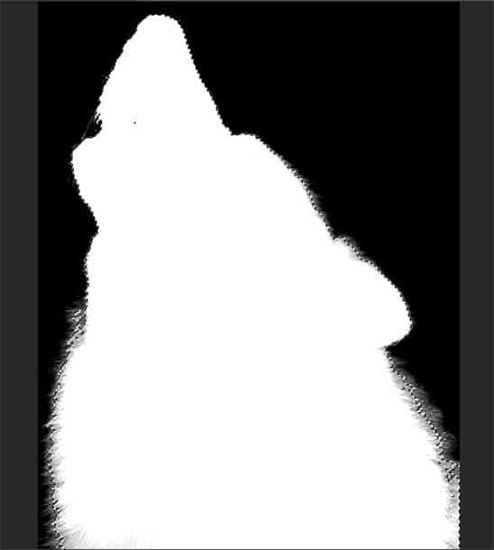 step8f-wolf