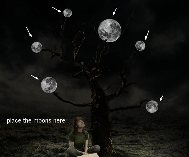 moon24