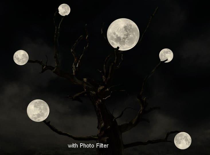 moon25a