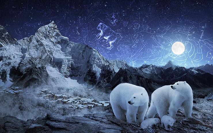 Tạo đêm Magical Starry của Polar Bears trong Photoshop