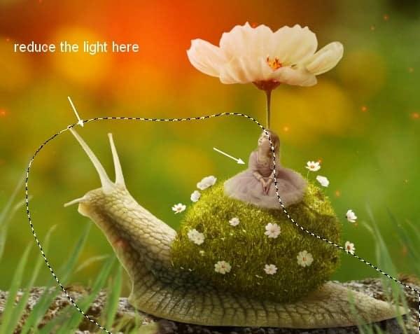 snail30b