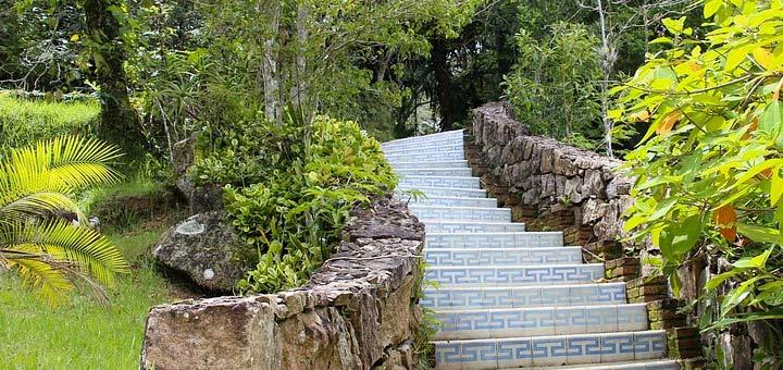 Revetement Jardin Amazing Revtement Mural En Bambou