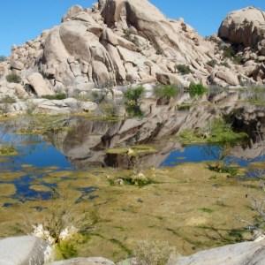 Rocks Photograph