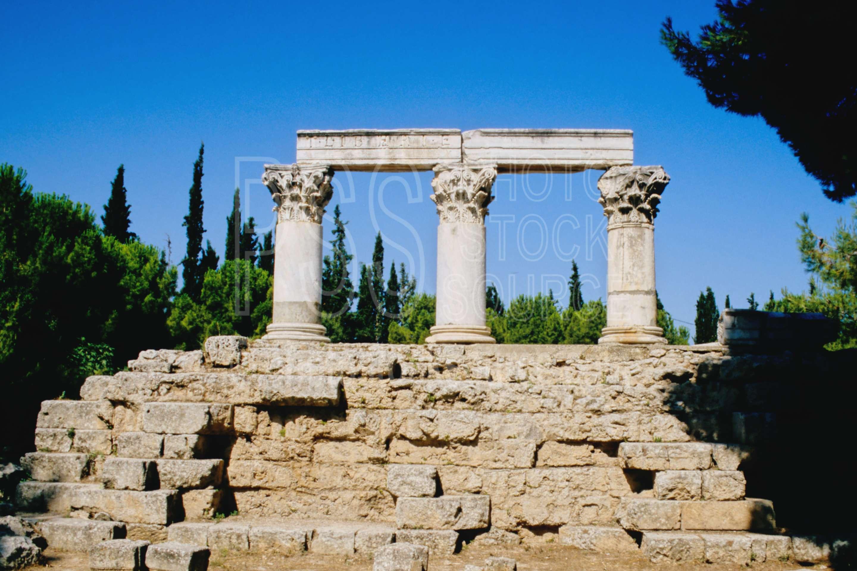 Animals Plants And Greece Interesting