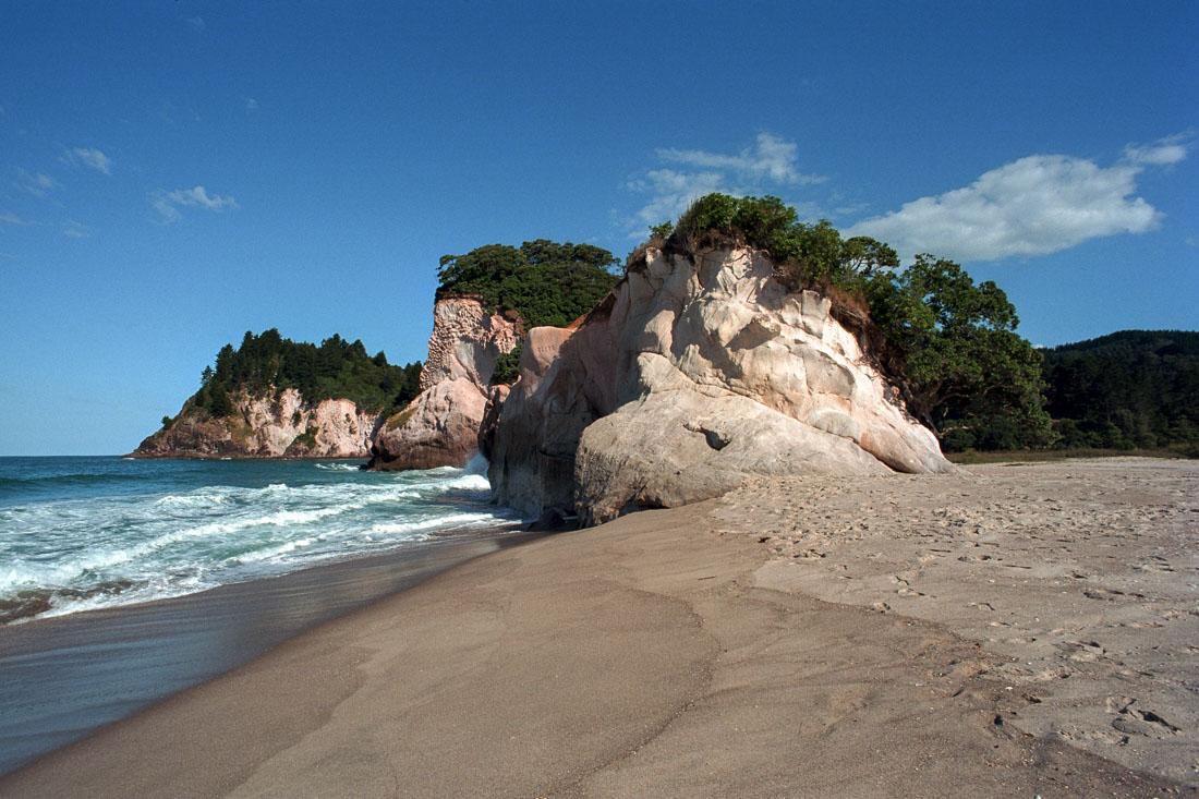 Waihi Beach, New Zealand | Nikon FM2n | Nikkor 35mm f/2.8 Ai | Kodak Portra 400