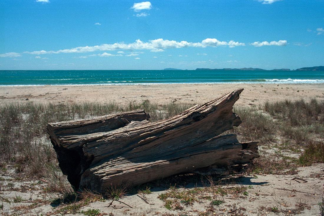 Rings Beach, Coromandel Peninsula, NZ | Nikon FM2n | Nikkor 35mm f/2.8 Ai | Kodak Portra 400