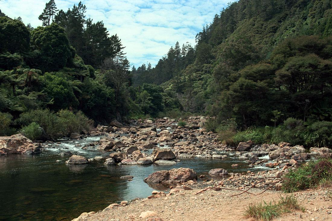 Karangahake, NZ | Nikon FM2n | Nikkor 20mm f/4 Ai | Kodak Portra 400