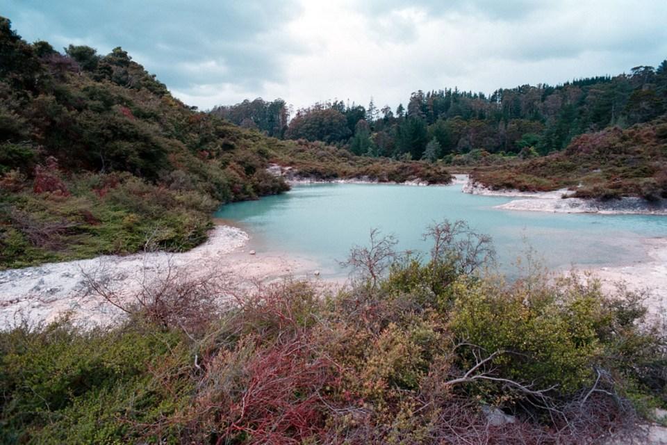 Te Puia, Rotorua, NZ | Nikon F3 | Nikkor 35mm f/2.8 Ai | Kodak Ektar 100