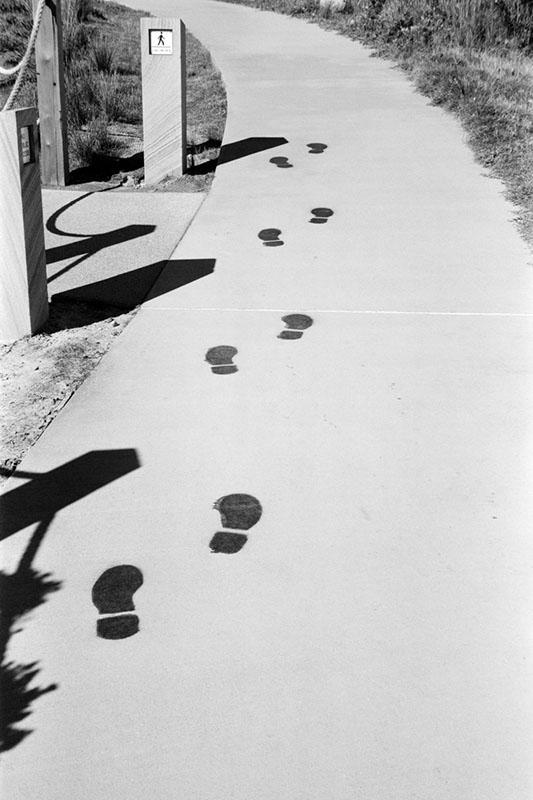 Footsteps | Voigtländer Bessa I | Kodak Tri-X