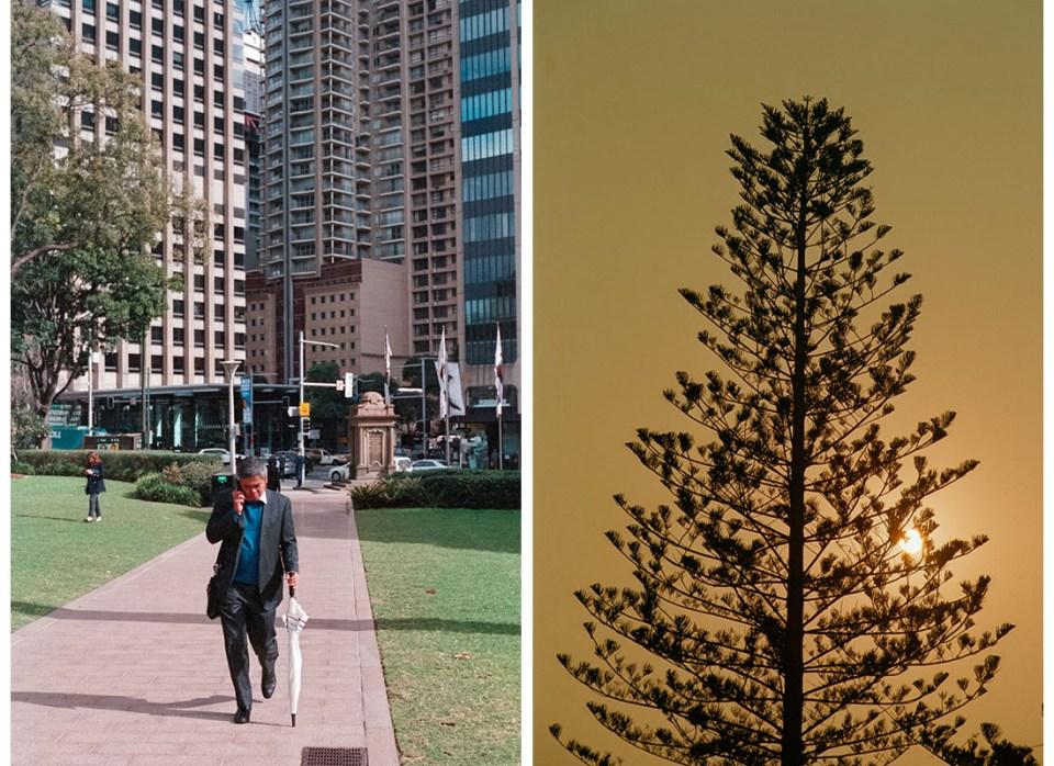 (l) On the phone | Nikon F100 | Nikkor 50mm 1:1.8 AF-S G | Fujifilm Press 800 (r) Sunset behind the tree | Nikon F100 | Nikkor 28-105mm 1:3.5-4.5 AF D | Kodak Ektar 100
