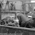 Wartime fears of a seaman's daughter
