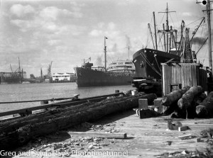 The ship Adelong at the timber wharf, Newcastle Harbour, April 24, 1946.