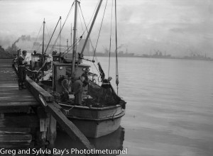 Commercial fishing boats in Newcastle Harbour, May 20, 1947.