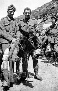 Anzac donkey-man Kirkpatrick's links to Newcastle, NSW