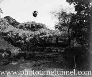View of Hollywood Pleasure Grounds, Lansvale, Sydney, circa 1928. (6)