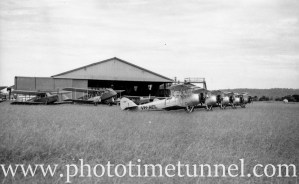 Avro Cadets at Newcastle Aero Club, NSW, 1940s. (3)
