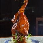 即買即用餐牌製作食物相片及設計模板 | PHOTOTORA - T0000891pre