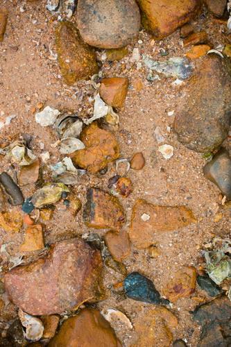 海沿いの砂と石