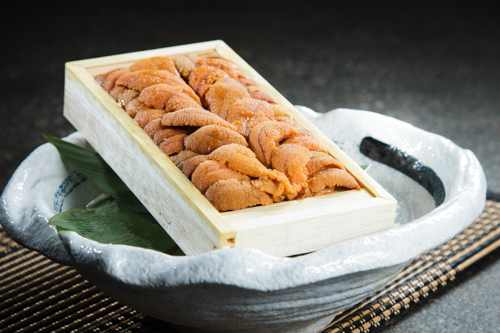 【完整一版的北海道馬糞海膽刺身】專業食物攝影師拍攝的圖片庫