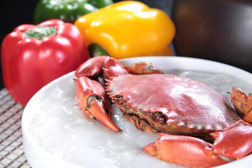 新鮮な蟹のおかゆ