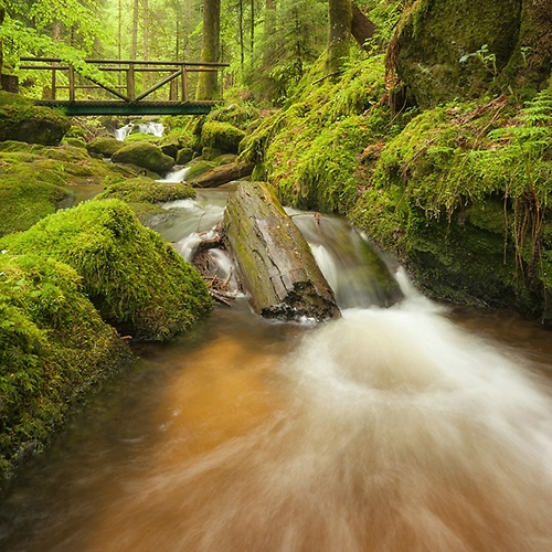 Schwarzwald, Wasserfäller, Gertelbach