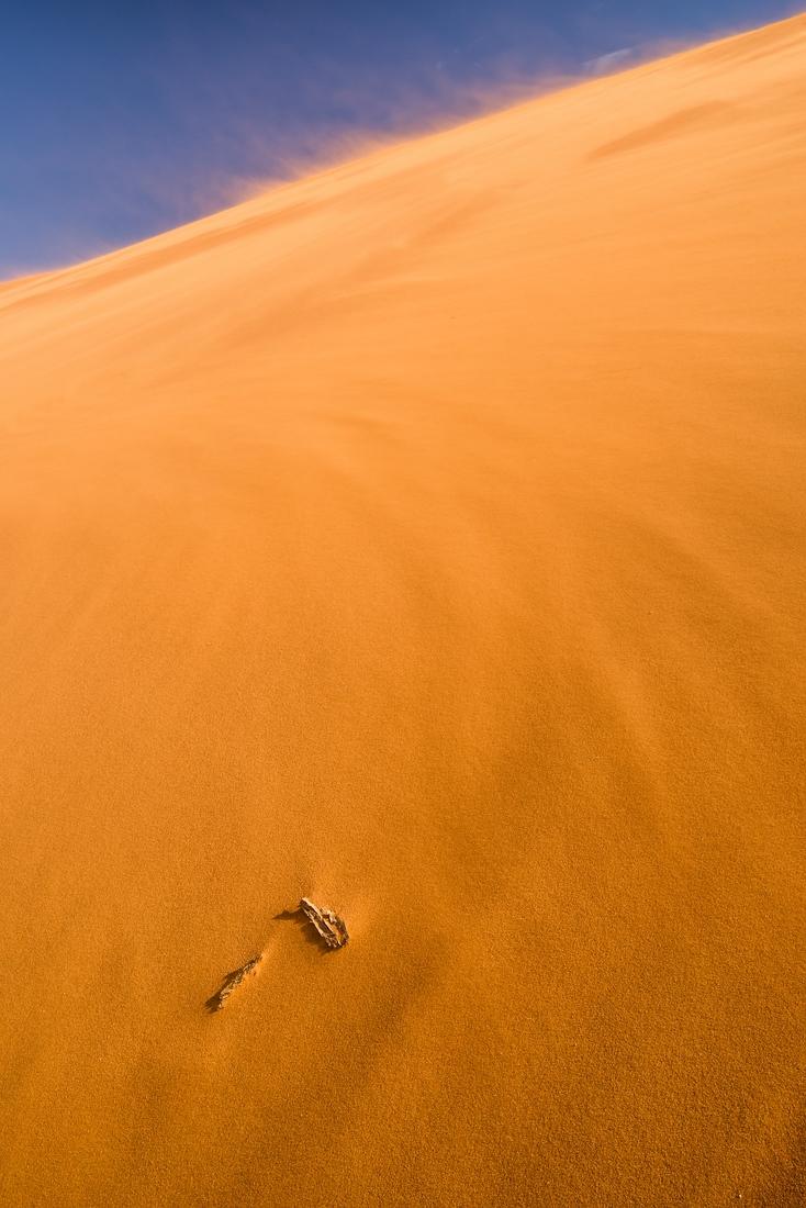 Düne 45 - der Wind weht heftig © Raik Krotofil