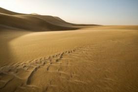 Swakopmund Dorob Dunes © Raik Krotofil