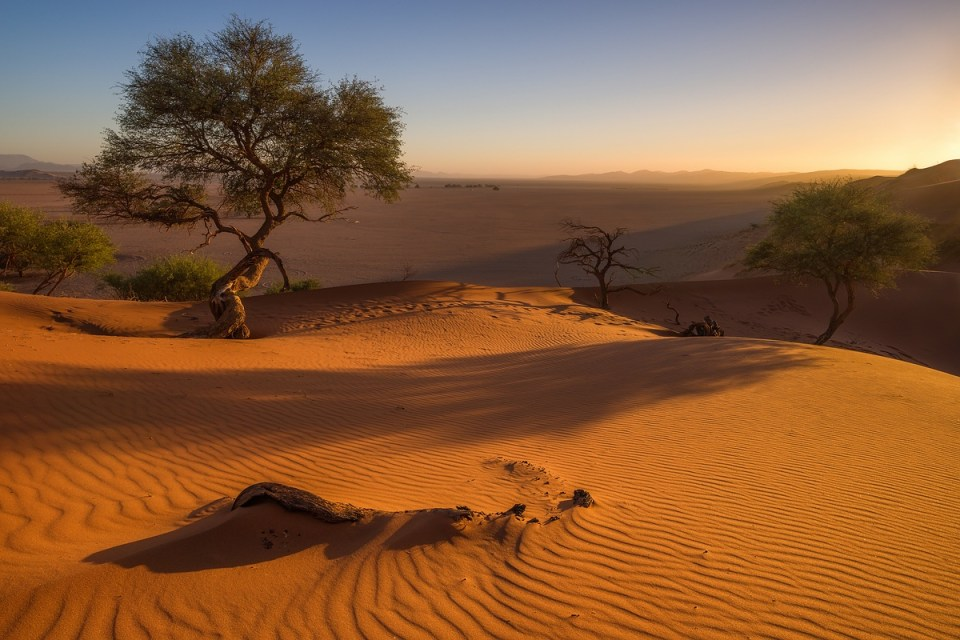Wüste Namib Namibia