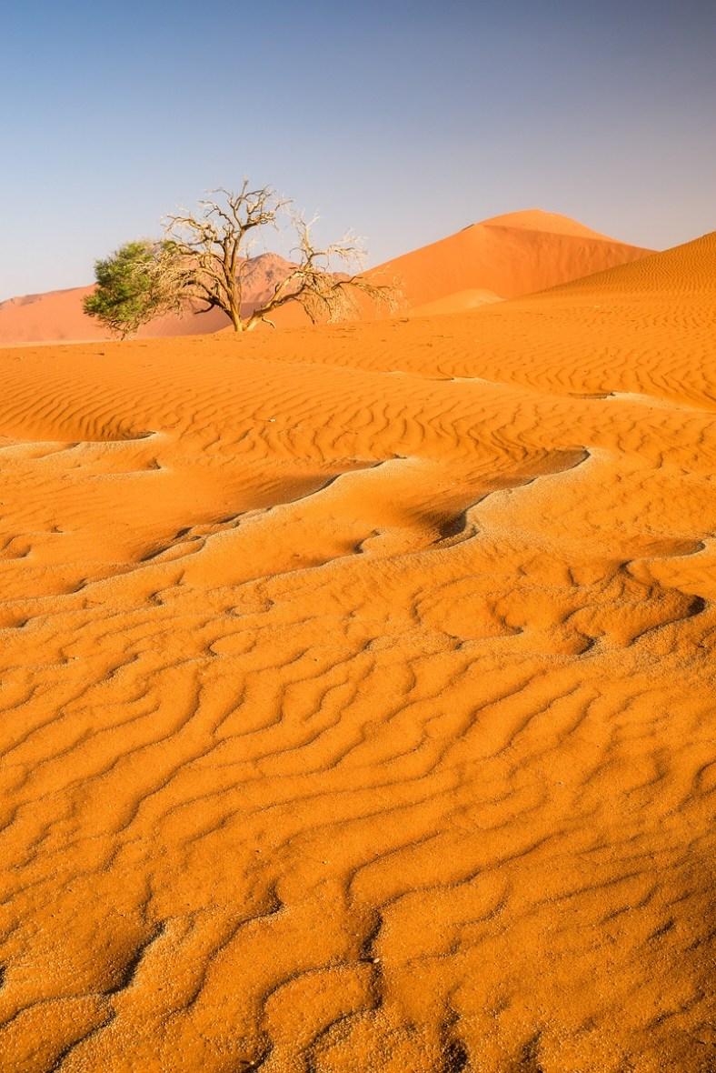 Düne 45 Namibia