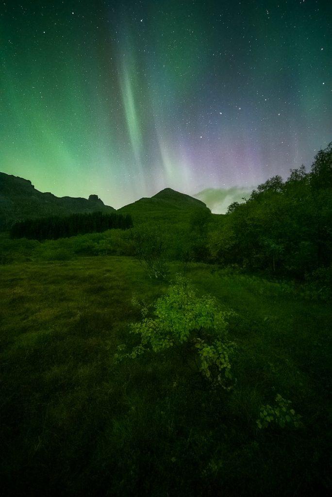 Nordlichter, Polarlichter Lofoten im Herbst Aurora