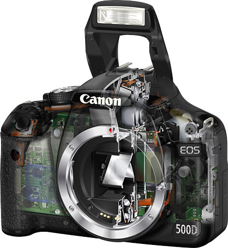 Canon EOS T1i / 500D with lens removed and showing mirror