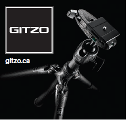 gitzo quick release system
