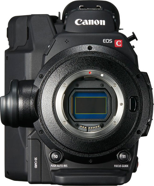Canon EOS C300 Mark II, body only