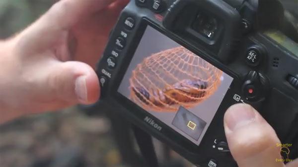 Image grab from video below