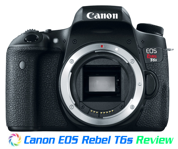 Canon T6s Review