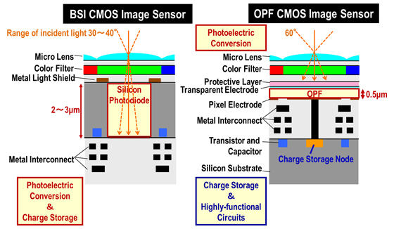 Cross-sectional image of conventional Back Side Illumination (BSI) CMOS image sensor and OPF CMOS image sensor