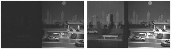 Fig.2 Images captured in color imaging mode (Left) and NIR imaging mode (Right).