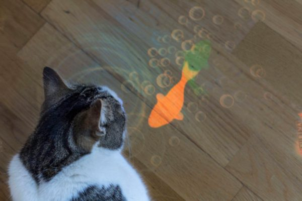 """Sony Xperia Touch: """"Type 'apps for cats' into Google Play Store and you'll be served up dozens of potential choices to keep your feline friend entertained."""" Image Courtesy of Sony"""
