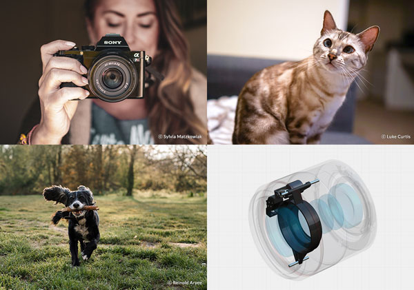 """Samyang (Rokinon) AF 45mm F1.8 FE: """"...fast, smooth autofocus with zero vibrations. With its Linear Activator Step Motor technology, you can experience consistent, internal autofocusing, which is fast and stable."""" Photos (left to right, top row) by Sylvia Matzkowiak, Luke Curtis. Photo (left, bottom row) by Reinold Aryee"""