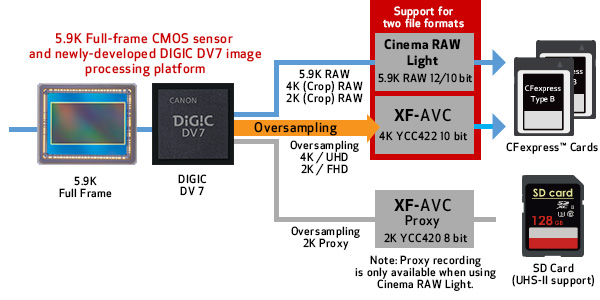 Canon EOS C500 Mark II can record Cinema RAW Light directly to onboard CFexpress cards, which keeps the data-rich signal captured by the 5.9K full-frame sensor intact.