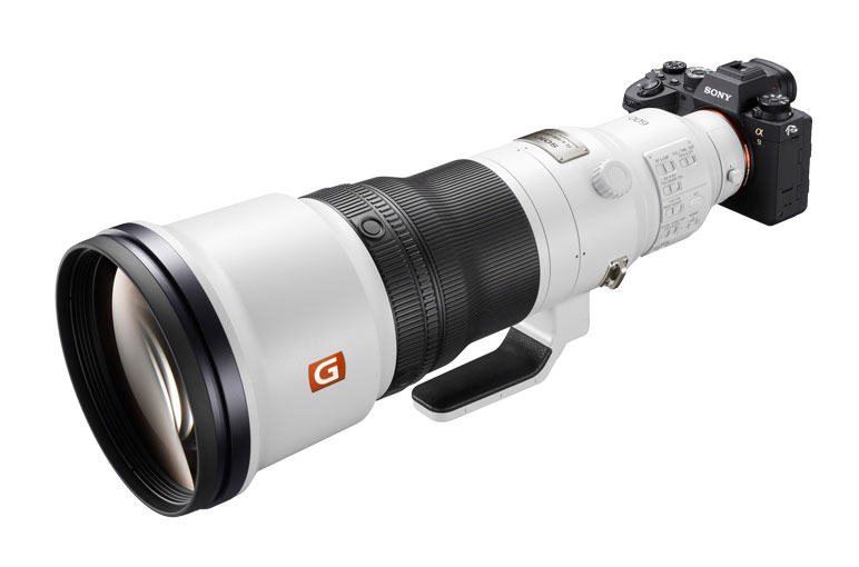 Sony A9 II with FE 600 mm F4 GM OSS lens