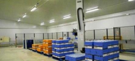 Multi Line Robotic Palletising System