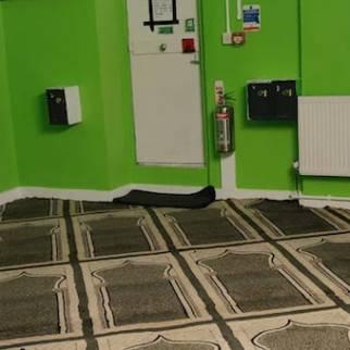 New-Carpet00001