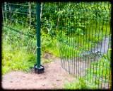 Дырка в заборе. прямо рядом со входом.