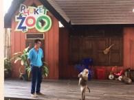 phuket_zoo_8516 (11)