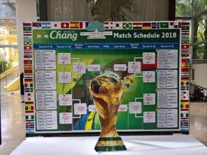 world_cup_soccer_japan-belgium (2)