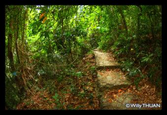 kathu-waterfalls-8