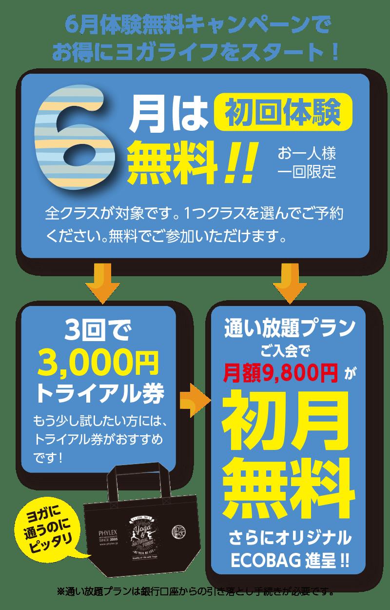 ヨガ 名古屋 長久手 6月無料体験キャンペーン ページ